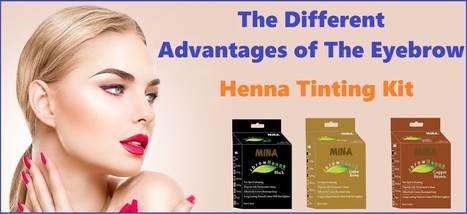 Mina Eyebrow Henna Tinting Kit Smore Newslett