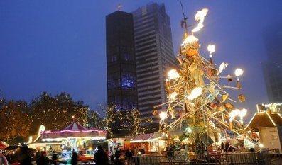 Holiday jeer for 'ugliest' German Christmas tree - The Local | Angelika's German Magazine | Scoop.it
