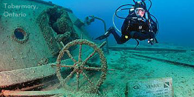 Scuba Diving in Canada - Best of Cold Waters Scuba Dives   Coldwater Scuba Diving   Scoop.it