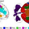Emotive Psicología: Relaciones
