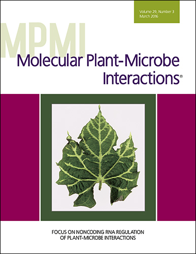 MPMI:Focus on Noncoding RNA Regulation of Plant-Microbe Interactions (2016) | Biotech | Scoop.it