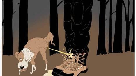 Hundedagene kommer   Mitt lille webunivers:)   Scoop.it