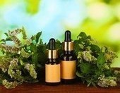 13 Common Ailments You Can Treat With Peppermint Oil   Health and Nutrition   Scoop.it