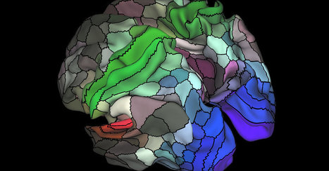 Updated Brain Map Identifies Nearly 100 New Regions | Story Route | Scoop.it