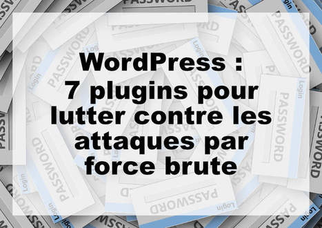 7 plugins WordPress pour lutter contre les attaques par force brute | Au fil du Web | Scoop.it