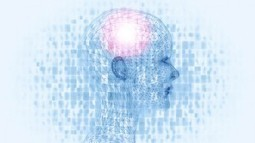 Eight Ways of Looking at Intelligence | Training & Self-Directed Learning | Scoop.it