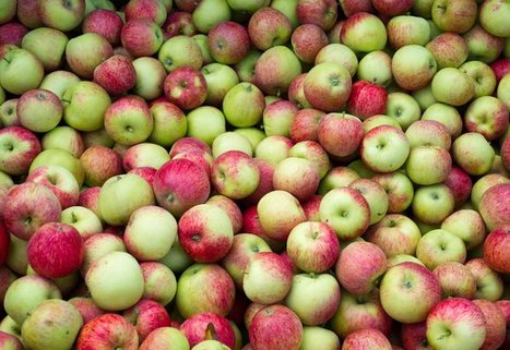 An apple a day keeps high cholesterol at bay? - Chicago Tribune | The Friends & Food Circle | Scoop.it