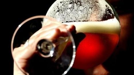 Beer is good for you: study finds anti-virus powers | Plantsheal | Scoop.it