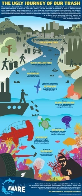 The Ugly Journey Of Our Trash | All about water, the oceans, environmental issues | Scoop.it