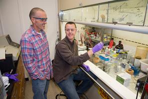 Researchers Produce Two Biofuels from a Single Algae : Woods Hole Oceanographic Institution   Ma veille - Technos et Réseaux Sociaux   Scoop.it