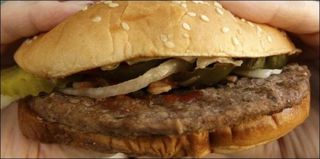 Un Suisse tué à Munich pour un burger | Mais n'importe quoi ! | Scoop.it