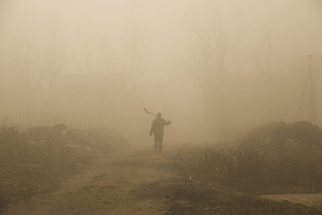 A Poem Praises Smog, and Why Not? It's From Cancer's Perspective | Creatively Aging | Scoop.it