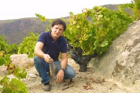Albariño voted Spain's best white | Autour du vin | Scoop.it