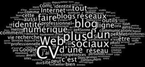 Lieux d'écriture du Web 2.0 et applications pédagogiques | Réseaux sociaux et FLE | Scoop.it