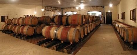 L'œnotourisme pour promouvoir les régions viticoles | Route des vins | Scoop.it