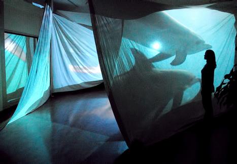 Underwater understanding: A multimedia art installation increases ocean ... - West Hawaii Today   #ETMOOC Topic 2: Digital Storytelling   Scoop.it