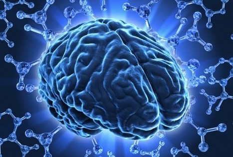 The Impact Of fMRI Over The Past 20 Years - Health News - redOrbit | Cognitive Psychology. Cognitive and behavioural Neuroscience | Scoop.it
