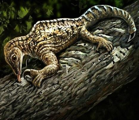 Un reptil ancestral desarrolló extremida...