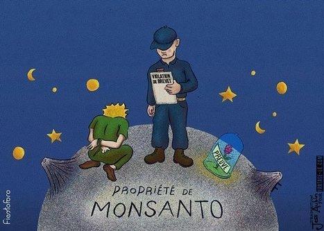 CADTM - Monsanto+Bayer=MoBay, le cartel des empoisonneurs contre la planète | ecology and economic | Scoop.it
