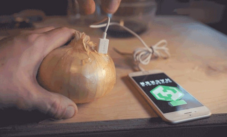 La version de Tor pour iOS désormais gratuite — Homputer Security | Applications Iphone, Ipad, Android et avec un zeste de news | Scoop.it