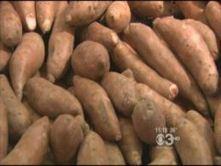 Health: Fatigue Fighting Foods - CBS Local   Food & Health 311   Scoop.it