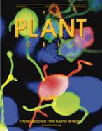 DEXH box RNA helicase–mediated mitochondrial reactive oxygen species production in Arabidopsis mediates crosstalk between abscisic acid and auxin signaling (Plant Cell) | Plant Genomics | Scoop.it