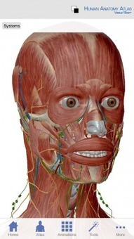 Visible Body Human Anatomy Atlas app updated to include microanatomy and greater detail | Gezondheid, GGD, WMO, WWB | Scoop.it