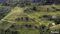 Vietnam Rice Industry Faces Threat From Climate Change, Mekong Dams | VOA | CGIAR Climate in the News | Scoop.it