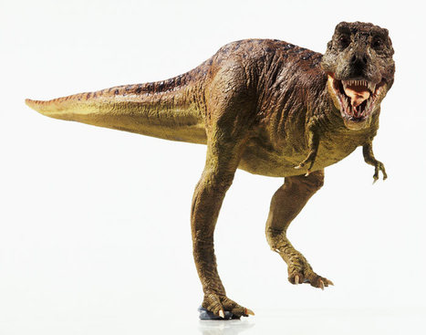 Teen /& Kids Triassic Reptile Fossils Geology Bullet Journal Dot Grid For Men Women Dinosaur