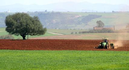 Le Maroc va distribuer un million d'hectares de terres aux petits agriculteurs