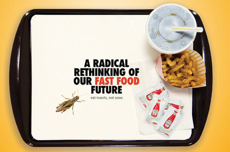iHop | Conservation | Entomophagy: Edible Insects and the Future of Food | Scoop.it
