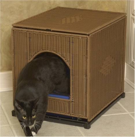Litter Box Cover Options: Ways to Disguise & Optimize Litter Boxes | Ask The Cat Doctor | Scoop.it