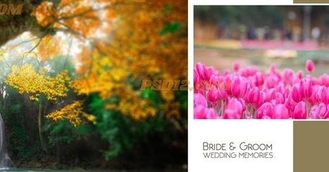 Wedding Embossed Photo Album Cover Design Pho