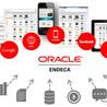 Oracle Endeca