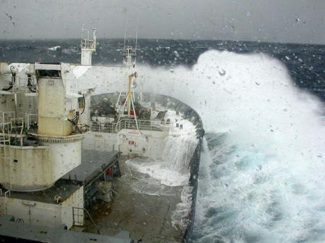 Aux îles Kerguelen: 29 janvier   Oeuvres ouvertes   Scoop.it