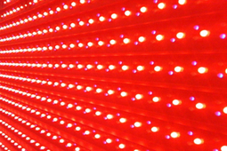 LEDs to Outsell Traditional Light Bulbs in 5 Years | Gear, Gadgets & Gizmos | Scoop.it