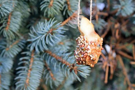 Guest Post: DIY Birdseed Bombs - Free People Blog | Potager & Jardin | Scoop.it