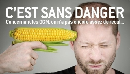 Evaluation des OGM en Europe : de scandale en supercherie | Sécurité sanitaire des aliments | Scoop.it