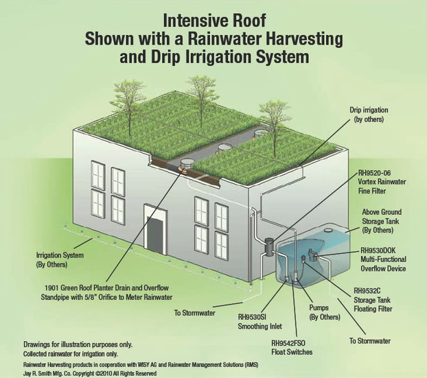 Green Roof Drains Intensive Roof Shown With