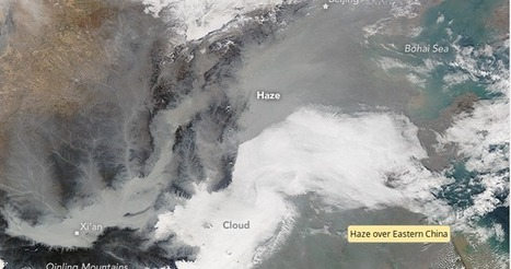 Avian Flu Diary: China's Hazy Flu Season   Influenza   Scoop.it