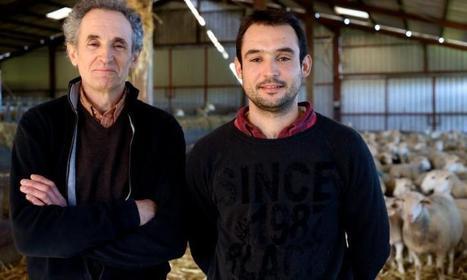 «L'agneau du Quercy a une viande plus douce que les autres» | Autour de Carennac et Magnagues | Scoop.it