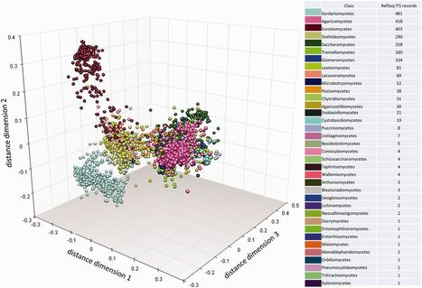 Finding needles in haystacks: linking scientific names, reference specimens and molecular data for Fungi | fungi bacteria publications | Scoop.it