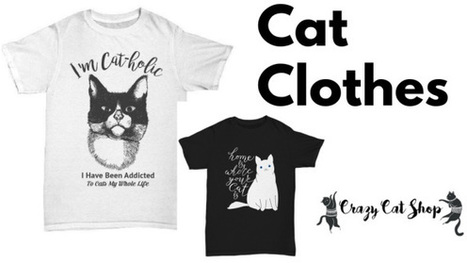 Beautiful And Unique Cat Themed Products Are Av