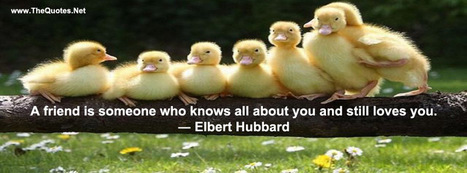 Facebook Cover Image - Best Friendship Line - TheQuotes.Net | Facebook Cover Photos | Scoop.it