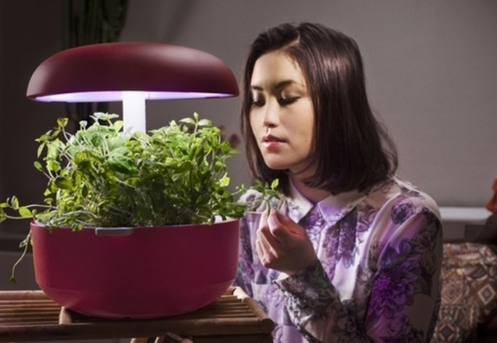 Plantui grows gardens in urban homes | Container Gardening | Scoop.it