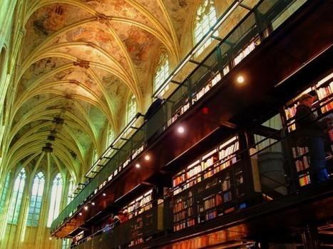 Selexyz Library | Rat de bibliothèque | Scoop.it