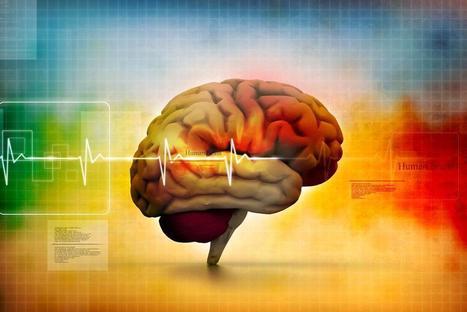Le curcuma, l'épice qui empêche le fluorure de détruire votre cerveau - R-éveillez vous | La curcumine du curcuma | Scoop.it