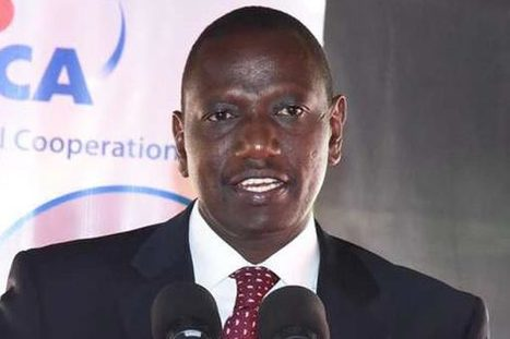 Ban on GM foods imports to be lifted in two months- Kenya's Deputy President, Hon. William Ruto | Modern Agricultural Biotechnology | Scoop.it