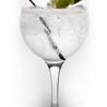 Cata de gin tonics