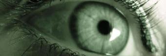 Iridologia: l'occhio specchio del corpo e della mente   Associazione Alveare - Avventure Culturali   Scoop.it